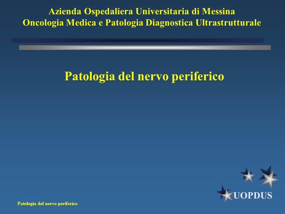 Patologia del nervo periferico UOPDUS Patologia del nervo periferico Azienda Ospedaliera Universitaria di Messina Oncologia Medica e Patologia Diagnos