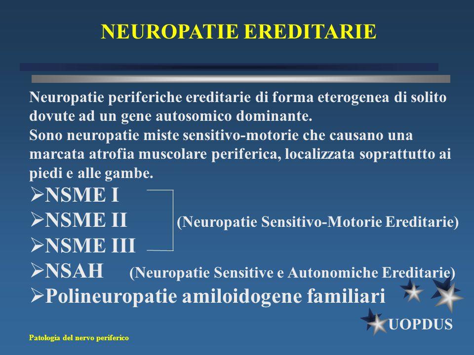 Patologia del nervo periferico UOPDUS Neuropatie periferiche ereditarie di forma eterogenea di solito dovute ad un gene autosomico dominante. Sono neu