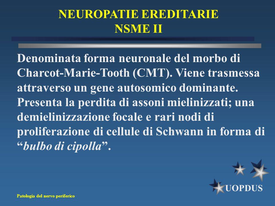 Patologia del nervo periferico UOPDUS NEUROPATIE EREDITARIE NSME II Denominata forma neuronale del morbo di Charcot-Marie-Tooth (CMT). Viene trasmessa