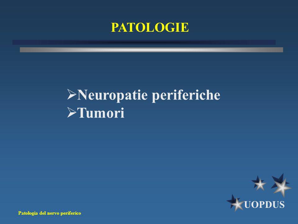 Patologia del nervo periferico UOPDUS PATOLOGIE  Neuropatie periferiche  Tumori