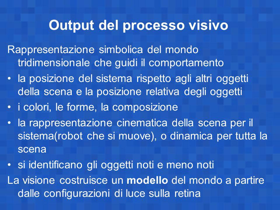 Output del processo visivo Rappresentazione simbolica del mondo tridimensionale che guidi il comportamento la posizione del sistema rispetto agli altr
