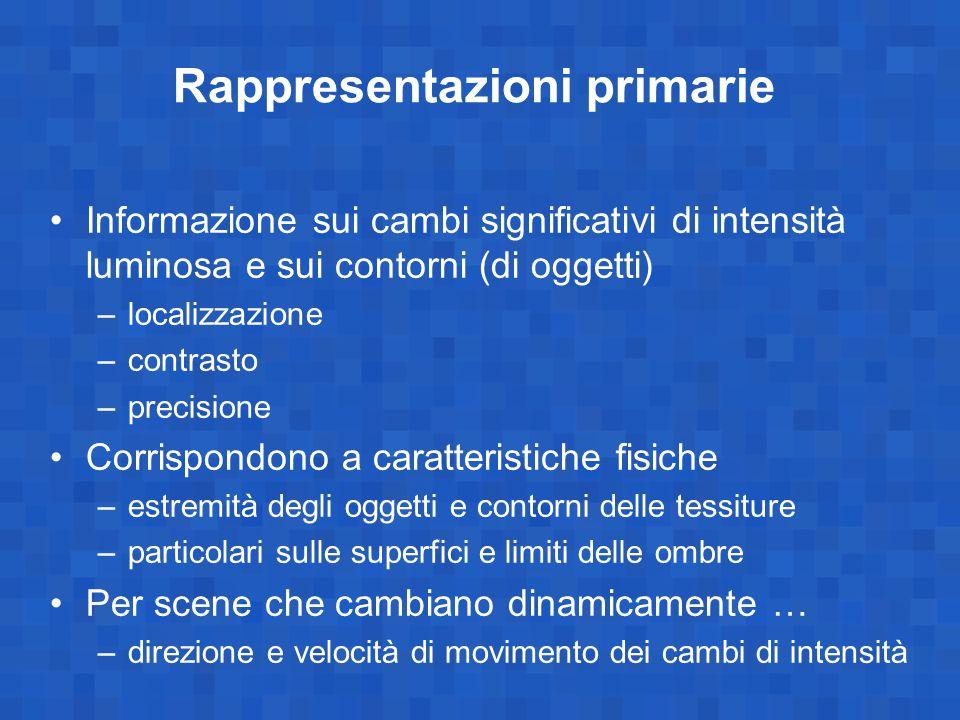 Rappresentazioni primarie Informazione sui cambi significativi di intensità luminosa e sui contorni (di oggetti) –localizzazione –contrasto –precision