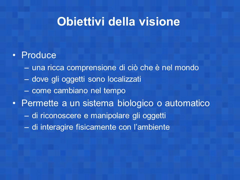 Obiettivi della visione Produce –una ricca comprensione di ciò che è nel mondo –dove gli oggetti sono localizzati –come cambiano nel tempo Permette a