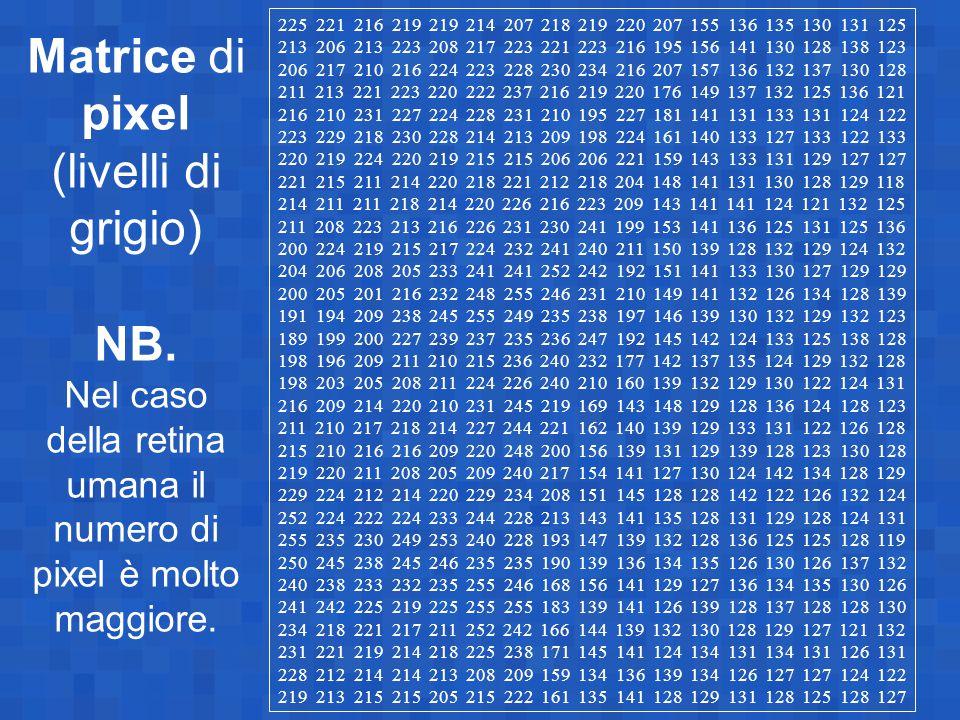 Matrice di pixel (livelli di grigio) NB. Nel caso della retina umana il numero di pixel è molto maggiore. 225 221 216 219 219 214 207 218 219 220 207