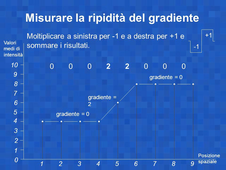 Misurare la ripidità del gradiente 1 10 0 23456789 1 2 3 4 5 6 7 8 9 Valori medi di intensità Posizione spaziale gradiente = 0 gradiente = 2 Moltiplicare a sinistra per -1 e a destra per +1 e sommare i risultati.
