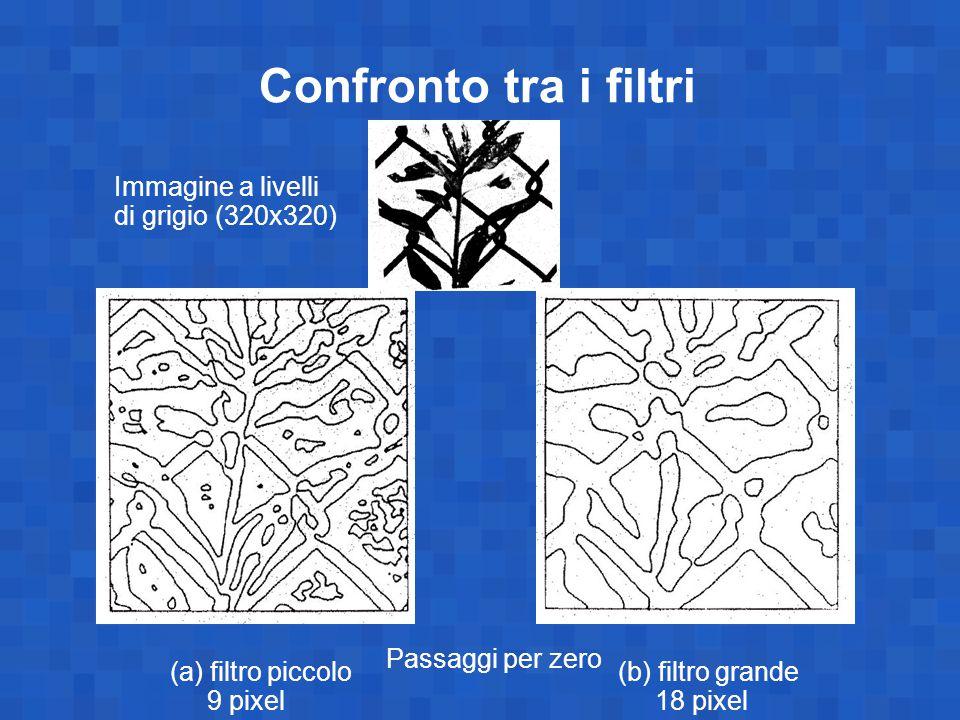 Confronto tra i filtri Immagine a livelli di grigio (320x320) Passaggi per zero (a) filtro piccolo 9 pixel (b) filtro grande 18 pixel