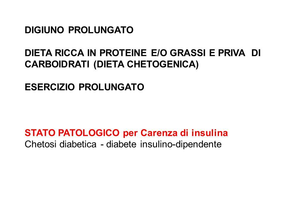 DIGIUNO PROLUNGATO DIETA RICCA IN PROTEINE E/O GRASSI E PRIVA DI CARBOIDRATI (DIETA CHETOGENICA) ESERCIZIO PROLUNGATO STATO PATOLOGICO per Carenza di