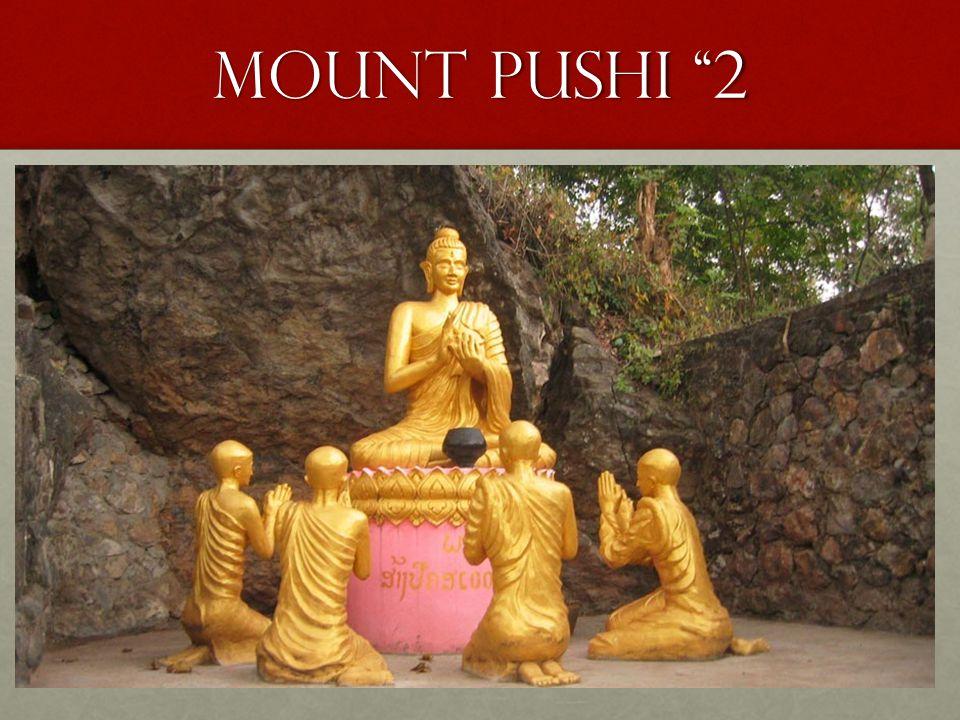 """MOUNT Pushi """"2"""