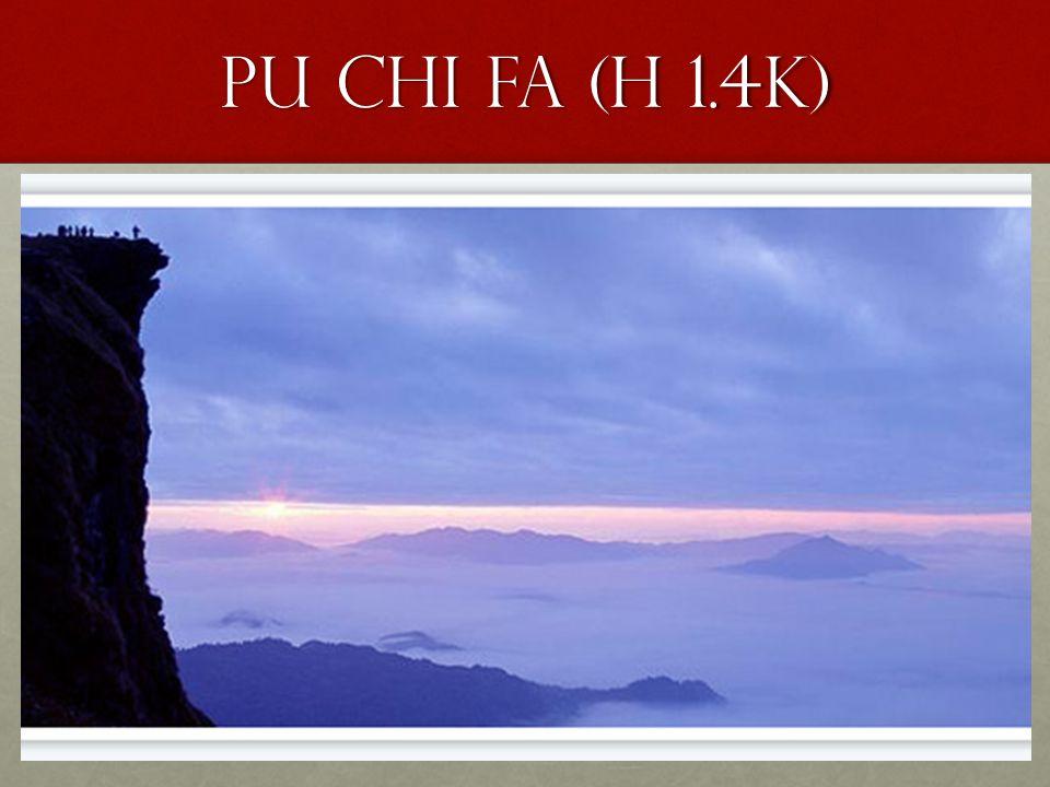 Pu Chi fa (h 1.4k)