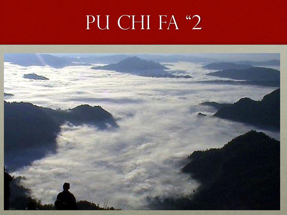"""Pu Chi fa """"2"""