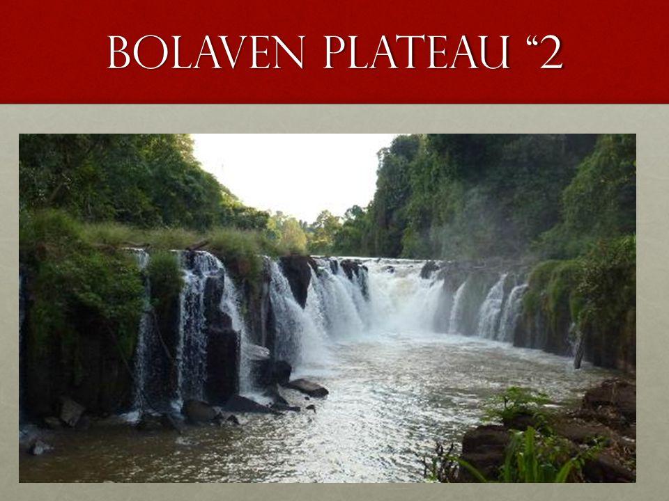 Bolaven plateau 2