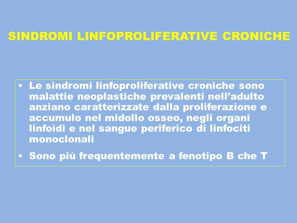 SINDROMI LINFOPROLIFERATIVE CRONICHE Le sindromi linfoproliferative croniche sono malattie neoplastiche prevalenti nell'adulto anziano caratterizzate