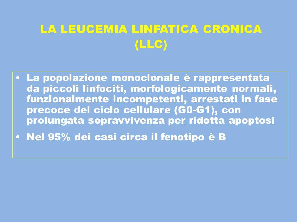 La popolazione monoclonale è rappresentata da piccoli linfociti, morfologicamente normali, funzionalmente incompetenti, arrestati in fase precoce del