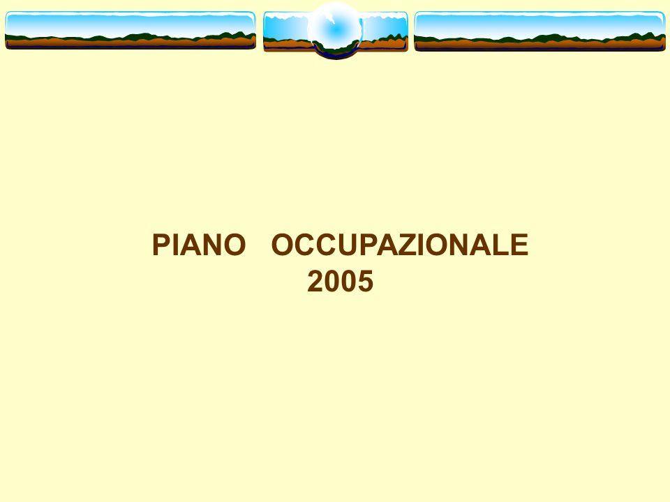 PIANO OCCUPAZIONALE 2005