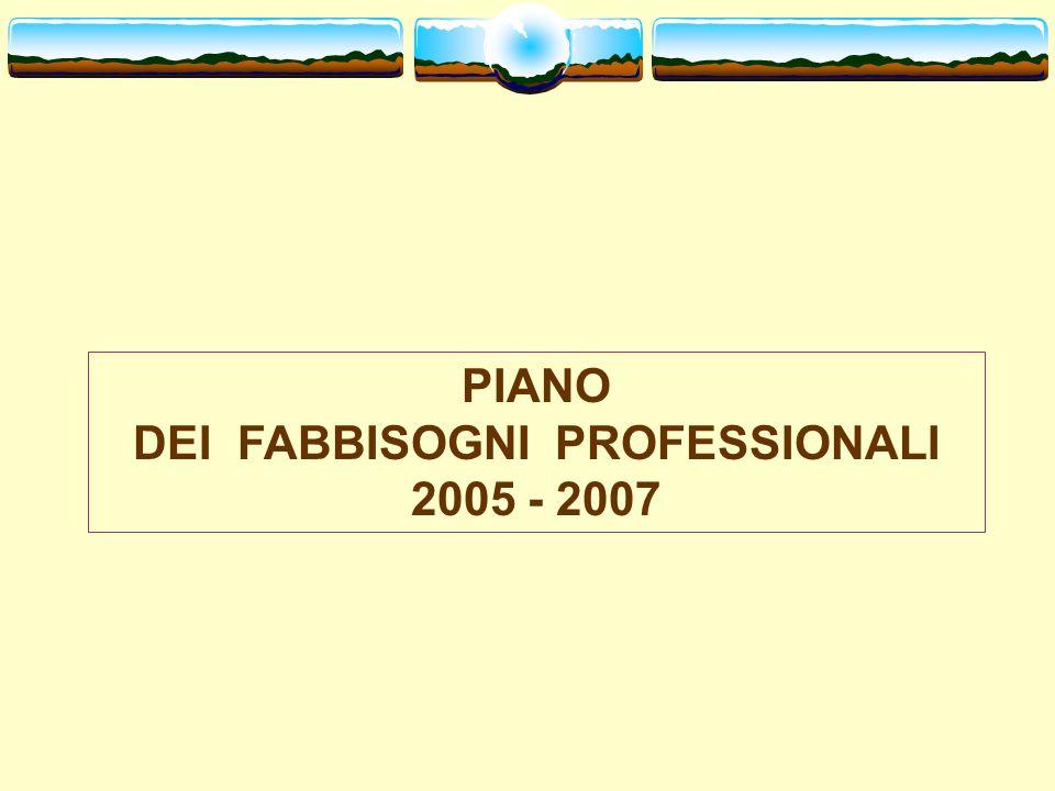 PIANO DEI FABBISOGNI PROFESSIONALI 2005 - 2007
