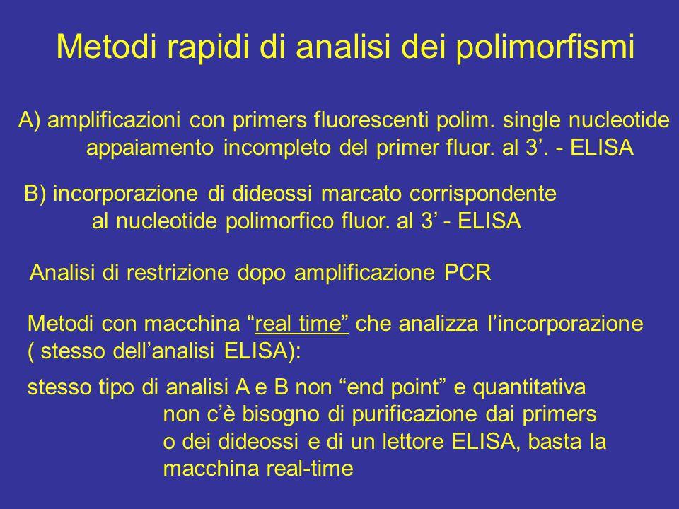 Metodi rapidi di analisi dei polimorfismi A) amplificazioni con primers fluorescenti polim.