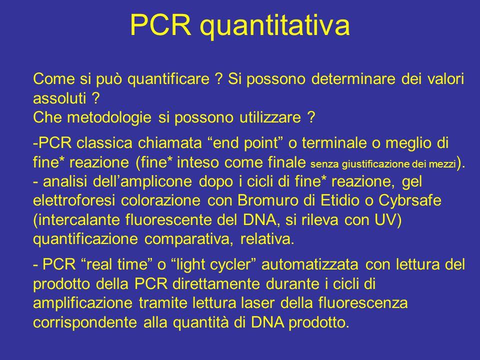PCR quantitativa Come si può quantificare .Si possono determinare dei valori assoluti .