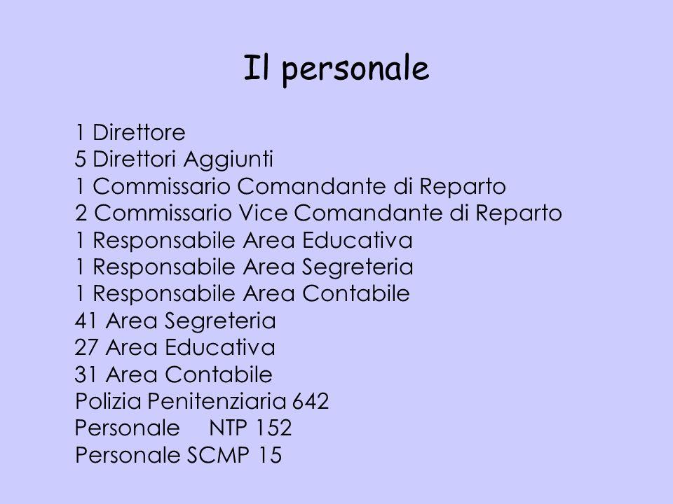 Organizzazione per aree funzionali Fonti: Circ.DAP n.