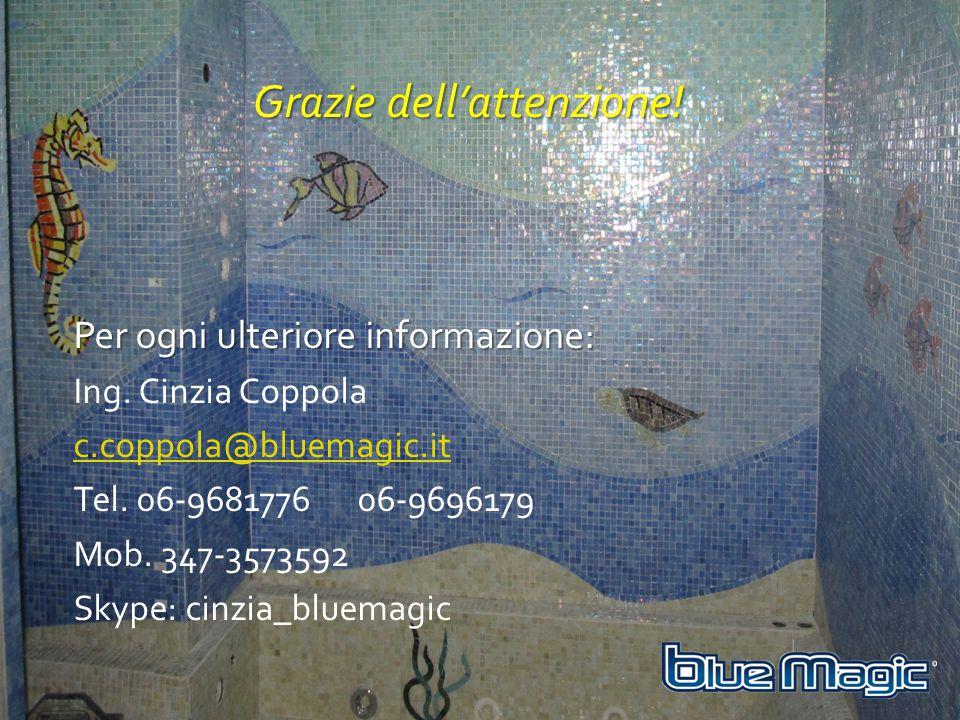 Grazie dell'attenzione! Per ogni ulteriore informazione: Ing. Cinzia Coppola c.coppola@bluemagic.it Tel. 06-9681776 06-9696179 Mob. 347-3573592 Skype: