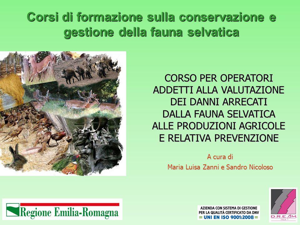 Corsi di formazione sulla conservazione e gestione della fauna selvatica A cura di Maria Luisa Zanni e Sandro Nicoloso CORSO PER OPERATORI ADDETTI ALL