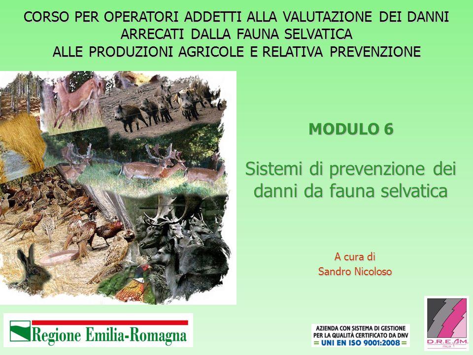 MODULO 6 Sistemi di prevenzione dei danni da fauna selvatica A cura di Sandro Nicoloso CORSO PER OPERATORI ADDETTI ALLA VALUTAZIONE DEI DANNI ARRECATI