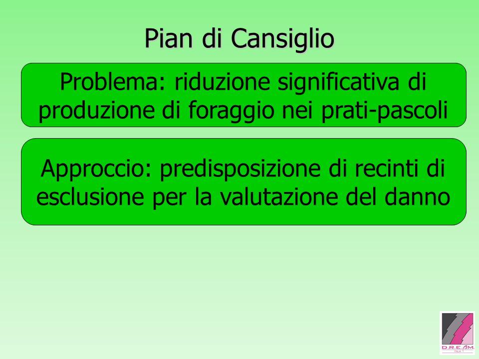 Pian di Cansiglio Problema: riduzione significativa di produzione di foraggio nei prati-pascoli Approccio: predisposizione di recinti di esclusione pe