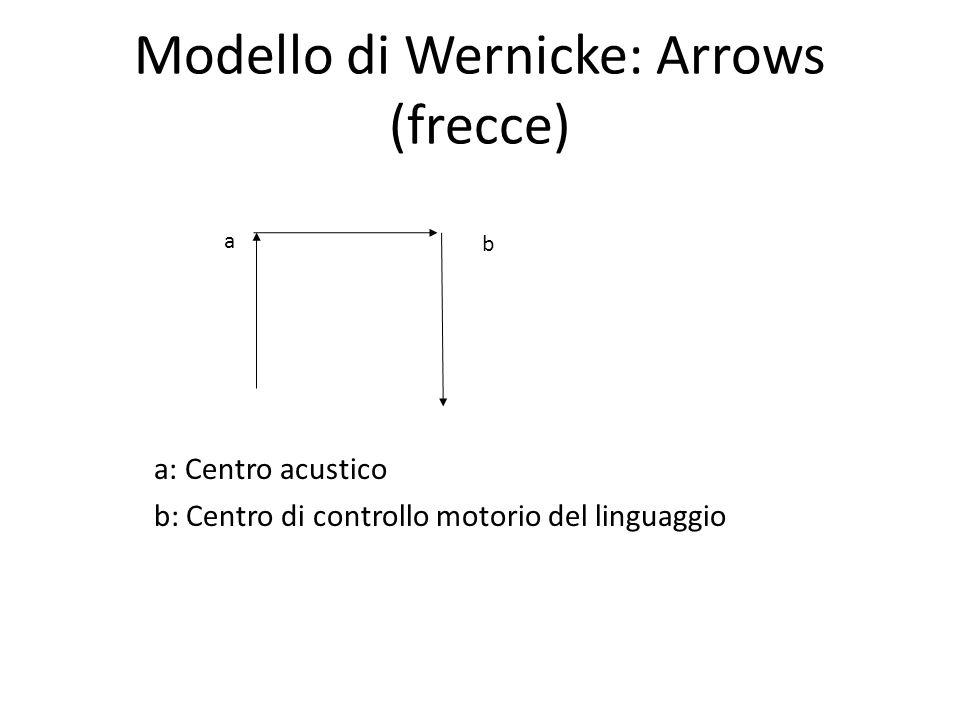 Modello di Wernicke: Arrows (frecce) a: Centro acustico b: Centro di controllo motorio del linguaggio a b