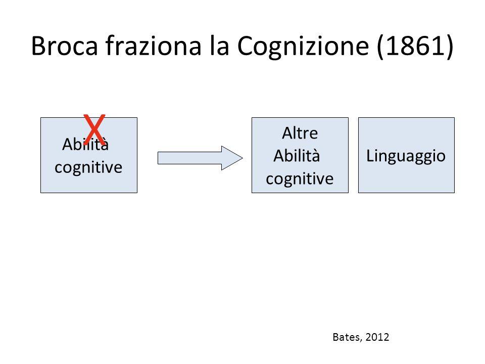 Evidenze neuropsicologiche Paul Broca (1861) Paziente con lesione cerebrale – Linguaggio danneggiato – Altri processi cognitivi quali memoria, attenzione, e riconoscimento di oggetti preservati.