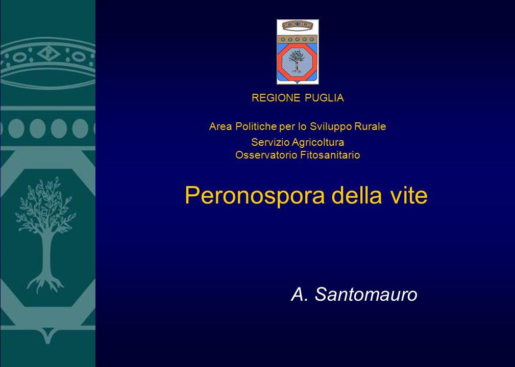 Peronospora della vite A. Santomauro REGIONE PUGLIA Area Politiche per lo Sviluppo Rurale Servizio Agricoltura Osservatorio Fitosanitario