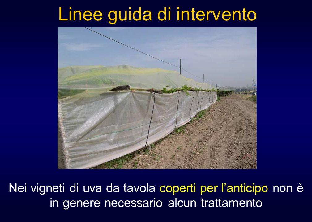 Nei vigneti di uva da tavola coperti per l'anticipo non è in genere necessario alcun trattamento Linee guida di intervento