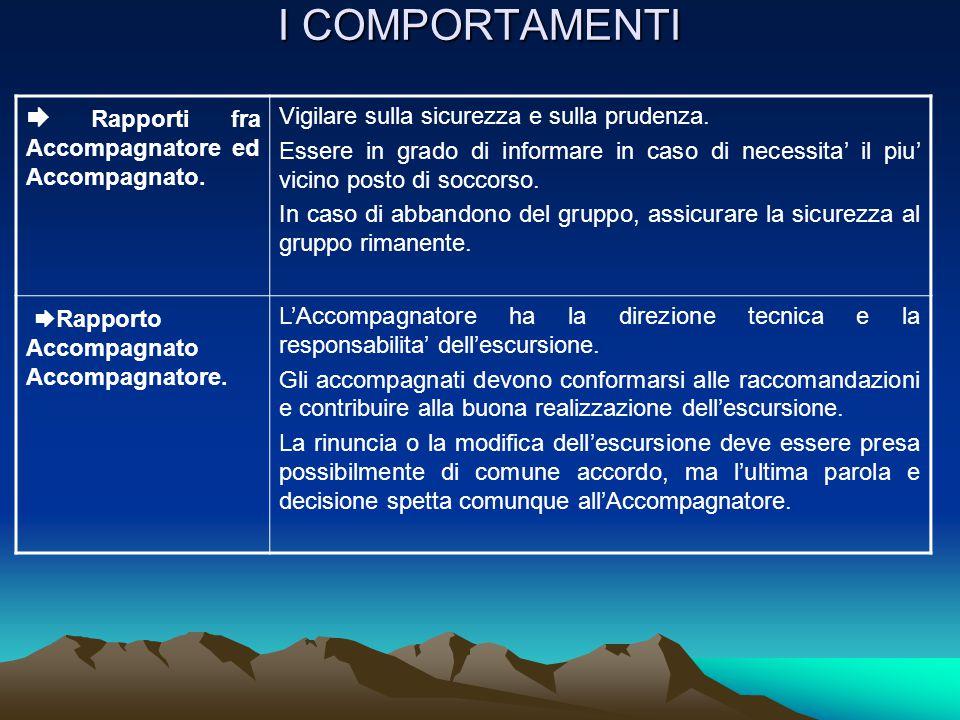 I COMPORTAMENTI Standard di condotta di un AE Quale comportamento .