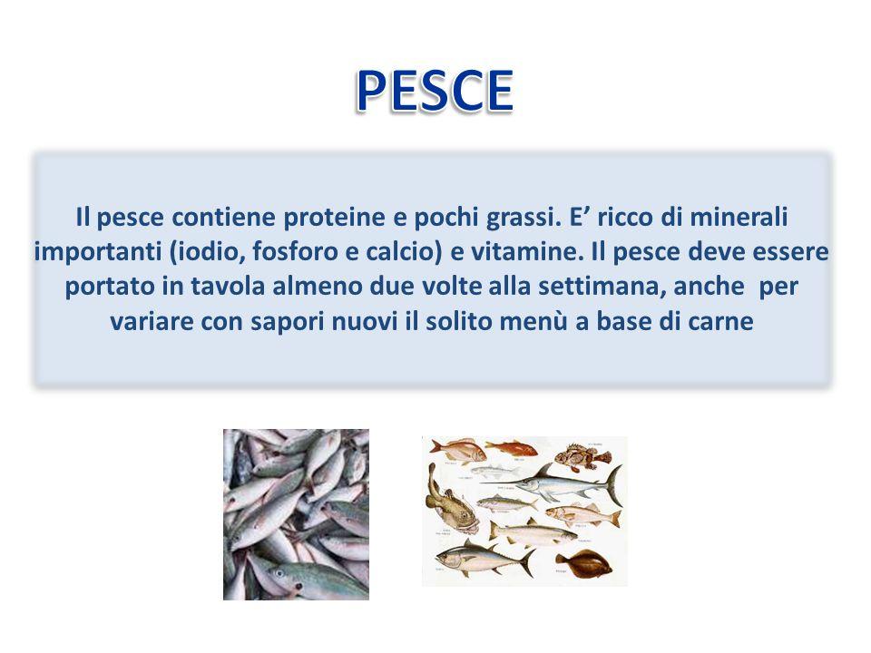 Il pesce contiene proteine e pochi grassi.