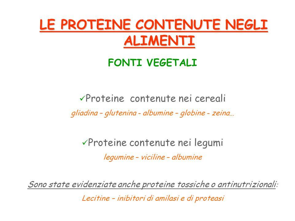 LE PROTEINE CONTENUTE NEGLI ALIMENTI FONTI VEGETALI Proteine contenute nei cereali gliadina – glutenina - albumine – globine - zeina… Proteine contenute nei legumi legumine – viciline – albumine Sono state evidenziate anche proteine tossiche o antinutrizionali : Lecitine – inibitori di amilasi e di proteasi