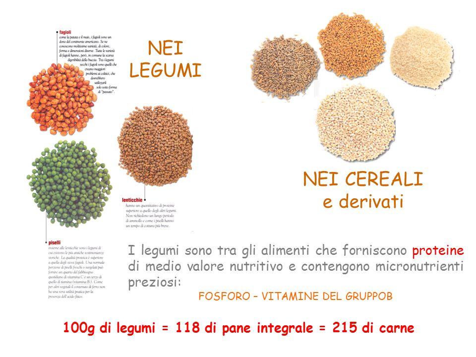 NEI LEGUMI NEI CEREALI e derivati I legumi sono tra gli alimenti che forniscono proteine di medio valore nutritivo e contengono micronutrienti preziosi: FOSFORO – VITAMINE DEL GRUPPOB 100g di legumi = 118 di pane integrale = 215 di carne