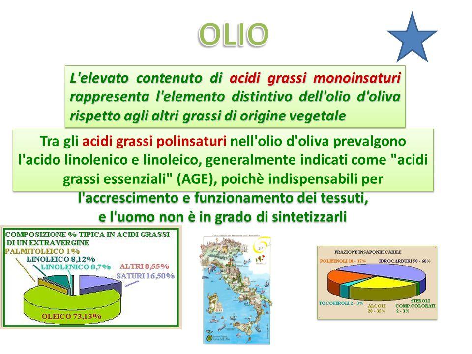 L elevato contenuto di acidi grassi monoinsaturi rappresenta l elemento distintivo dell olio d oliva rispetto agli altri grassi di origine vegetale Tra gli acidi grassi polinsaturi nell olio d oliva prevalgono l acido linolenico e linoleico, generalmente indicati come acidi grassi essenziali (AGE), poichè indispensabili per l accrescimento e funzionamento dei tessuti, e l uomo non è in grado di sintetizzarli Tra gli acidi grassi polinsaturi nell olio d oliva prevalgono l acido linolenico e linoleico, generalmente indicati come acidi grassi essenziali (AGE), poichè indispensabili per l accrescimento e funzionamento dei tessuti, e l uomo non è in grado di sintetizzarli