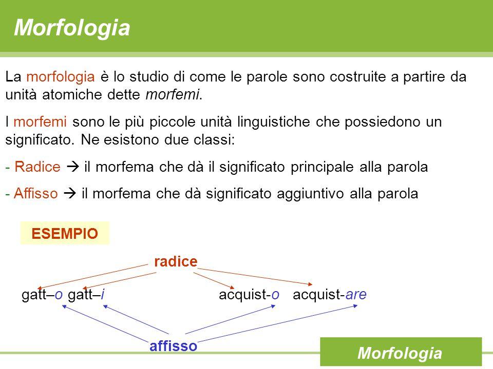 Morfologia La morfologia è lo studio di come le parole sono costruite a partire da unità atomiche dette morfemi.