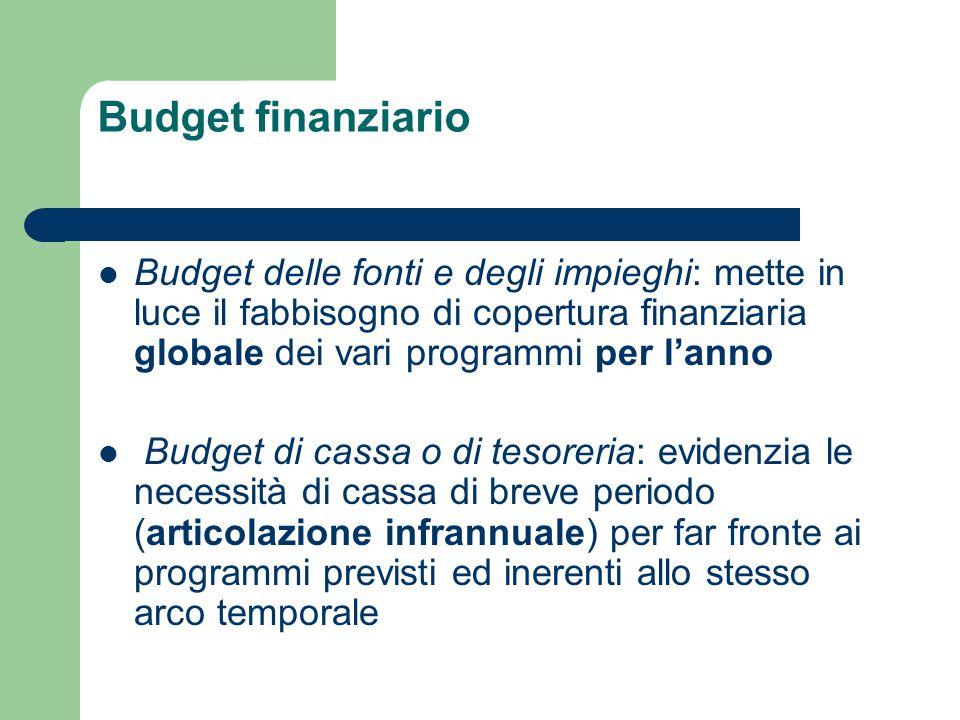 Budget finanziario Budget delle fonti e degli impieghi: mette in luce il fabbisogno di copertura finanziaria globale dei vari programmi per l'anno Bud