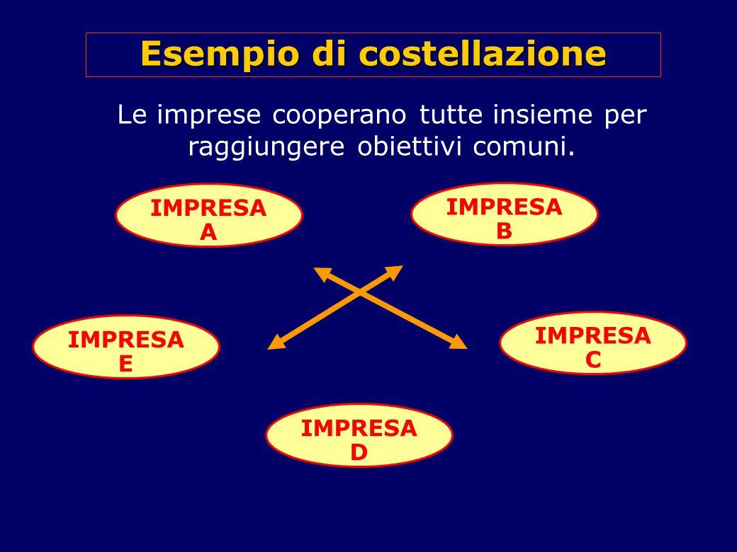 Esempio di costellazione Le imprese cooperano tutte insieme per raggiungere obiettivi comuni.