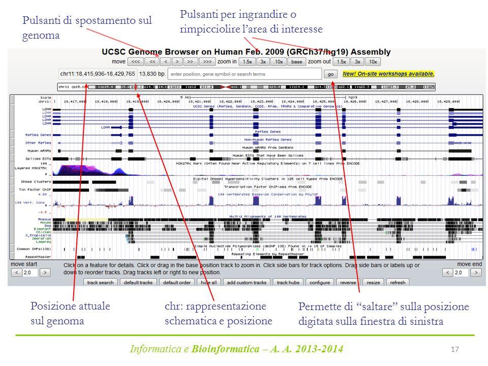 Informatica e Bioinformatica – A. A. 2013-2014 17 Pulsanti di spostamento sul genoma Pulsanti per ingrandire o rimpicciolire l'area di interesse Posiz