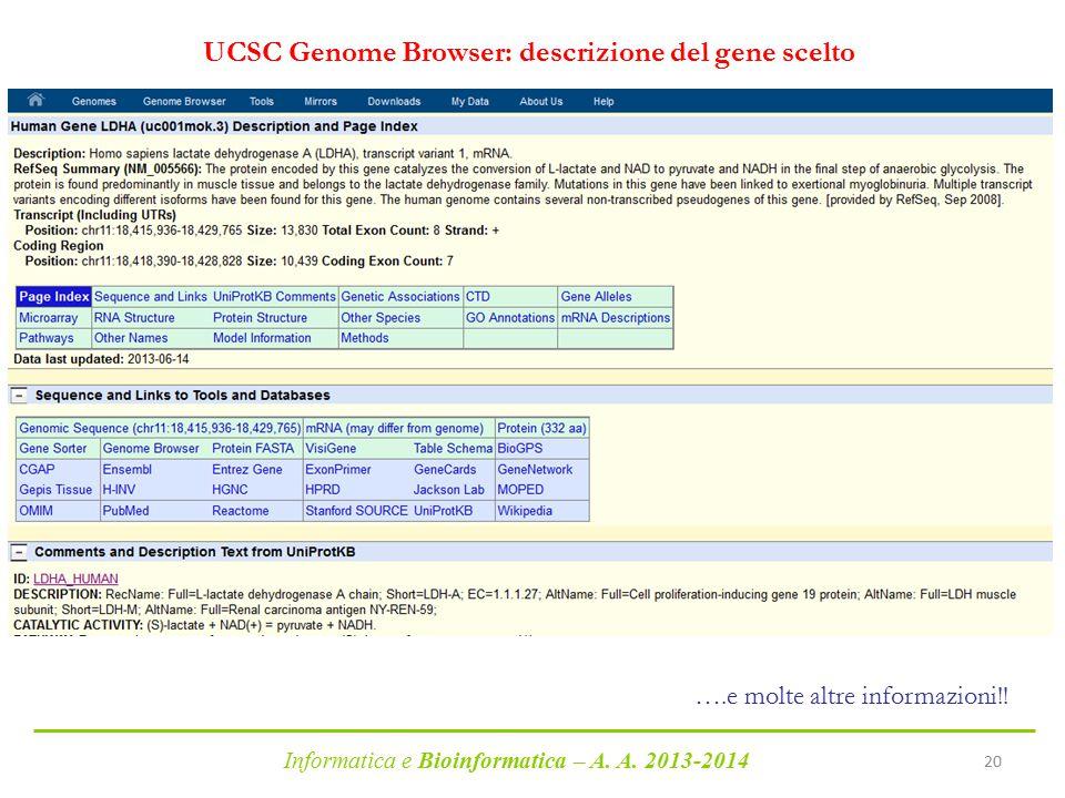 Informatica e Bioinformatica – A. A. 2013-2014 20 UCSC Genome Browser: descrizione del gene scelto ….e molte altre informazioni!!