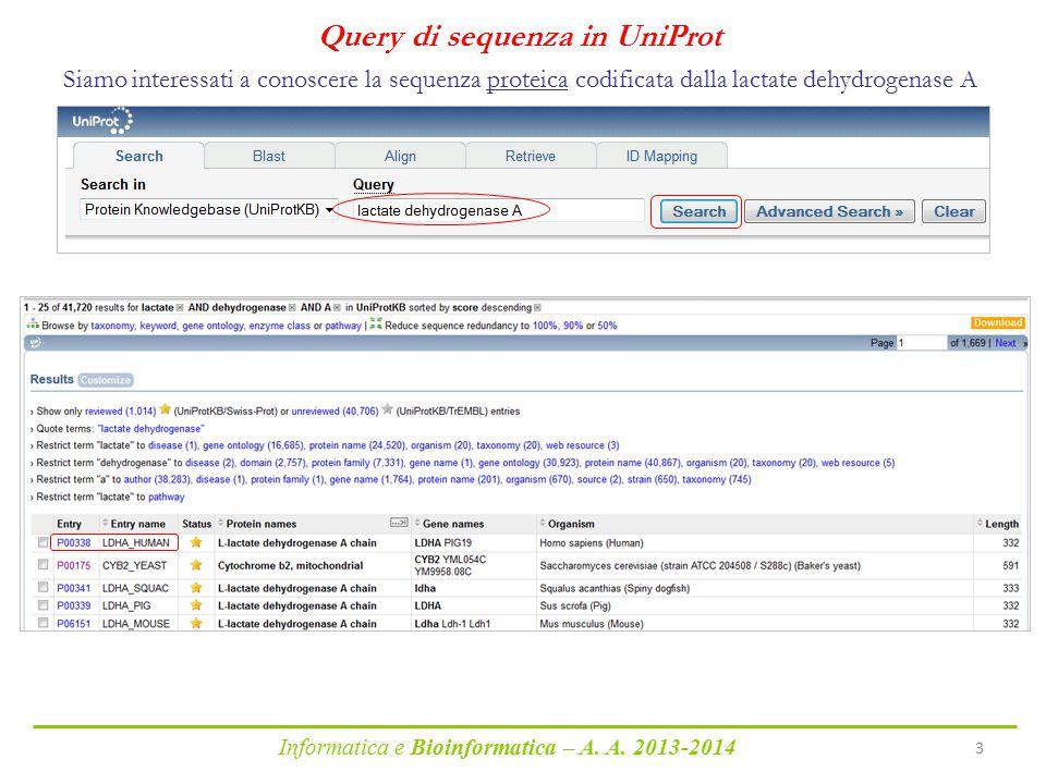 Informatica e Bioinformatica – A. A. 2013-2014 3 Query di sequenza in UniProt Siamo interessati a conoscere la sequenza proteica codificata dalla lact