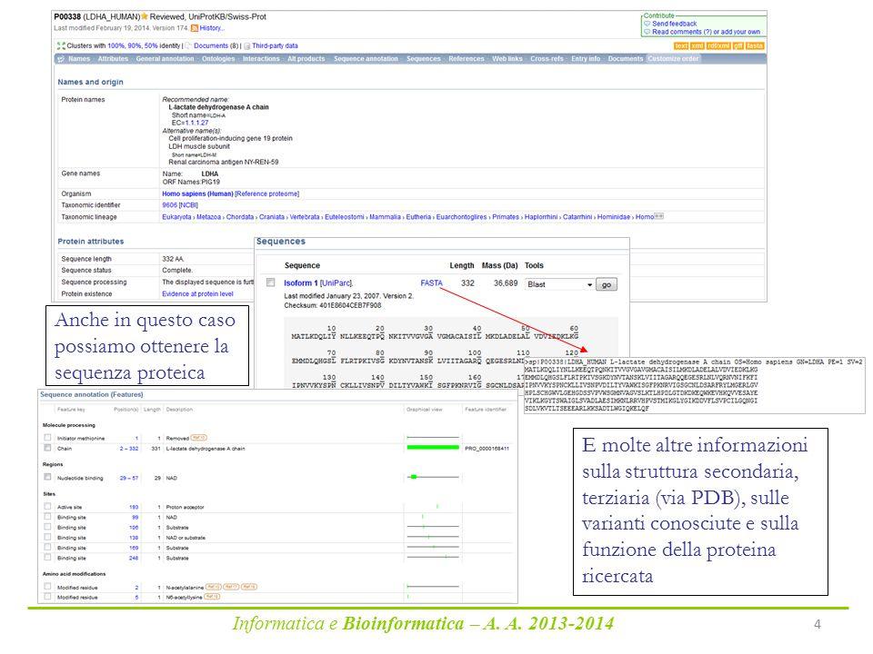 Informatica e Bioinformatica – A. A. 2013-2014 4 Anche in questo caso possiamo ottenere la sequenza proteica E molte altre informazioni sulla struttur