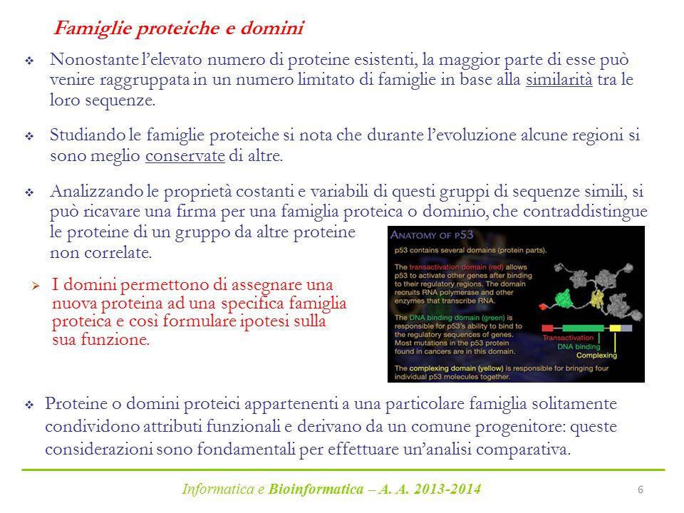 Informatica e Bioinformatica – A. A. 2013-2014 6 Famiglie proteiche e domini  Nonostante l'elevato numero di proteine esistenti, la maggior parte di