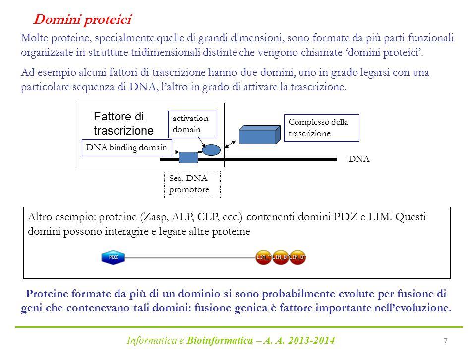 Informatica e Bioinformatica – A. A. 2013-2014 7 Proteine formate da più di un dominio si sono probabilmente evolute per fusione di geni che conteneva