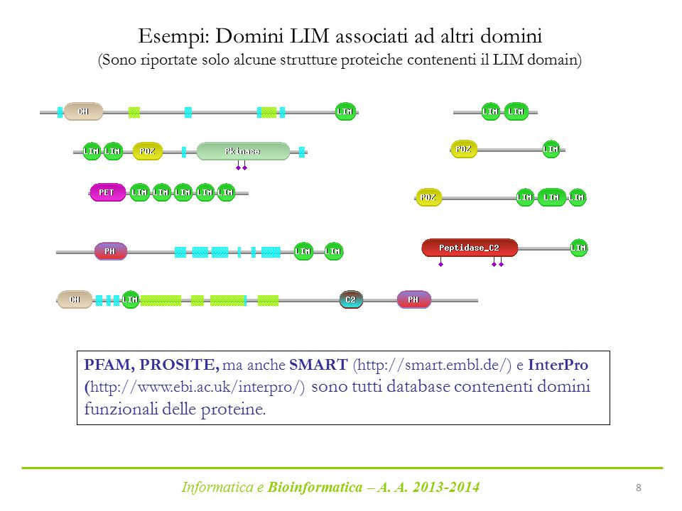 Informatica e Bioinformatica – A. A. 2013-2014 8 Esempi: Domini LIM associati ad altri domini (Sono riportate solo alcune strutture proteiche contenen