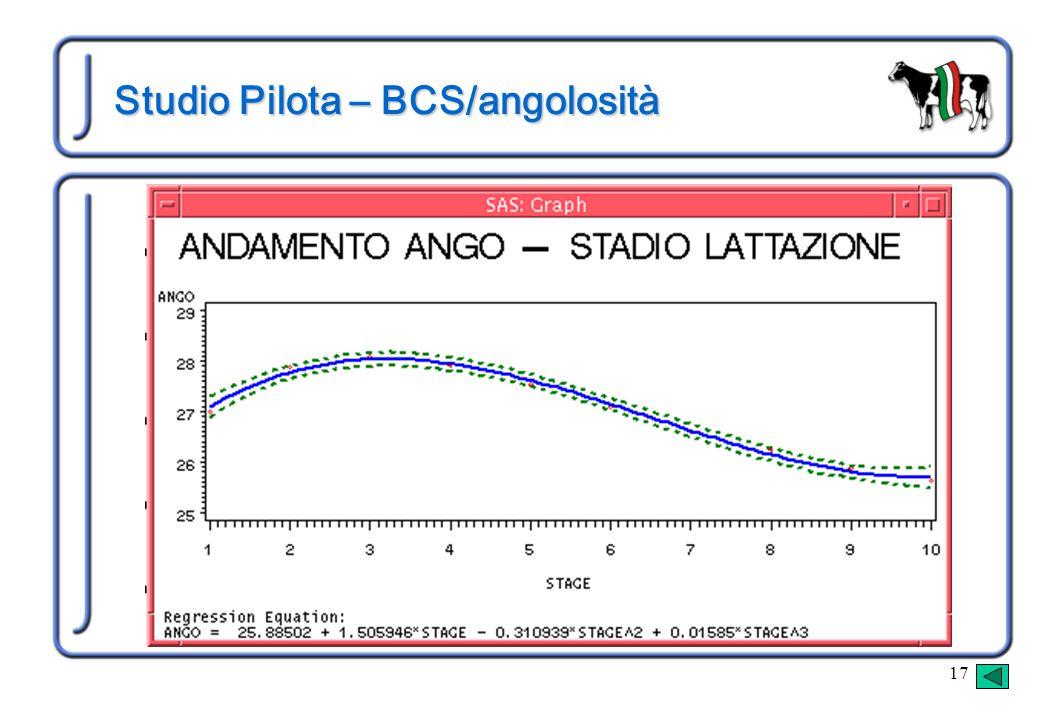 17 Studio Pilota – BCS/angolosità