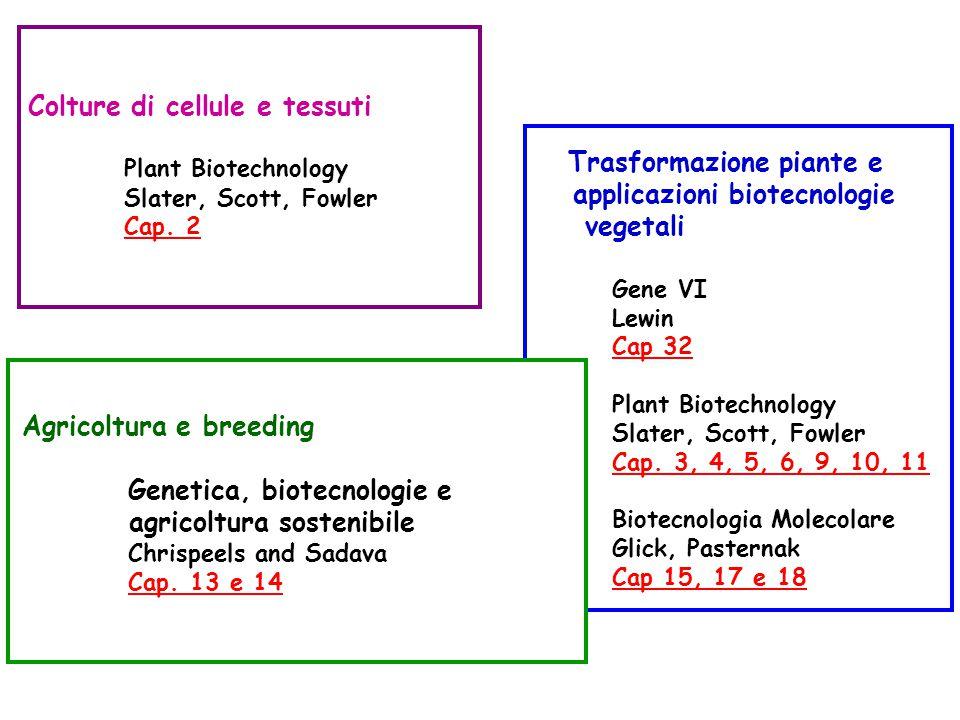 Colture di cellule e tessuti Plant Biotechnology Slater, Scott, Fowler Cap.