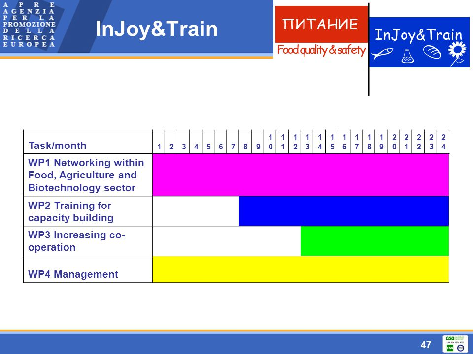 47 InJoy&Train Task/month 123456789 10101 1212 1313 1414 1515 1616 1717 1818 1919 2020 21212 2323 2424 WP1 Networking within Food, Agriculture and Bio
