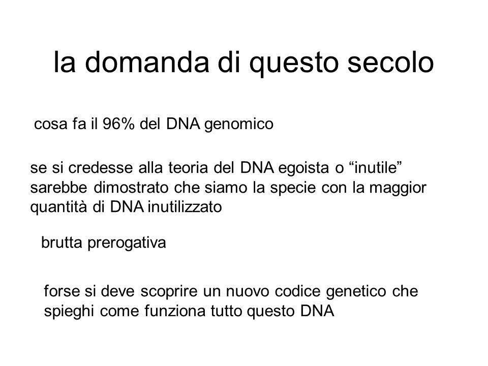 la domanda di questo secolo cosa fa il 96% del DNA genomico se si credesse alla teoria del DNA egoista o inutile sarebbe dimostrato che siamo la specie con la maggior quantità di DNA inutilizzato brutta prerogativa forse si deve scoprire un nuovo codice genetico che spieghi come funziona tutto questo DNA