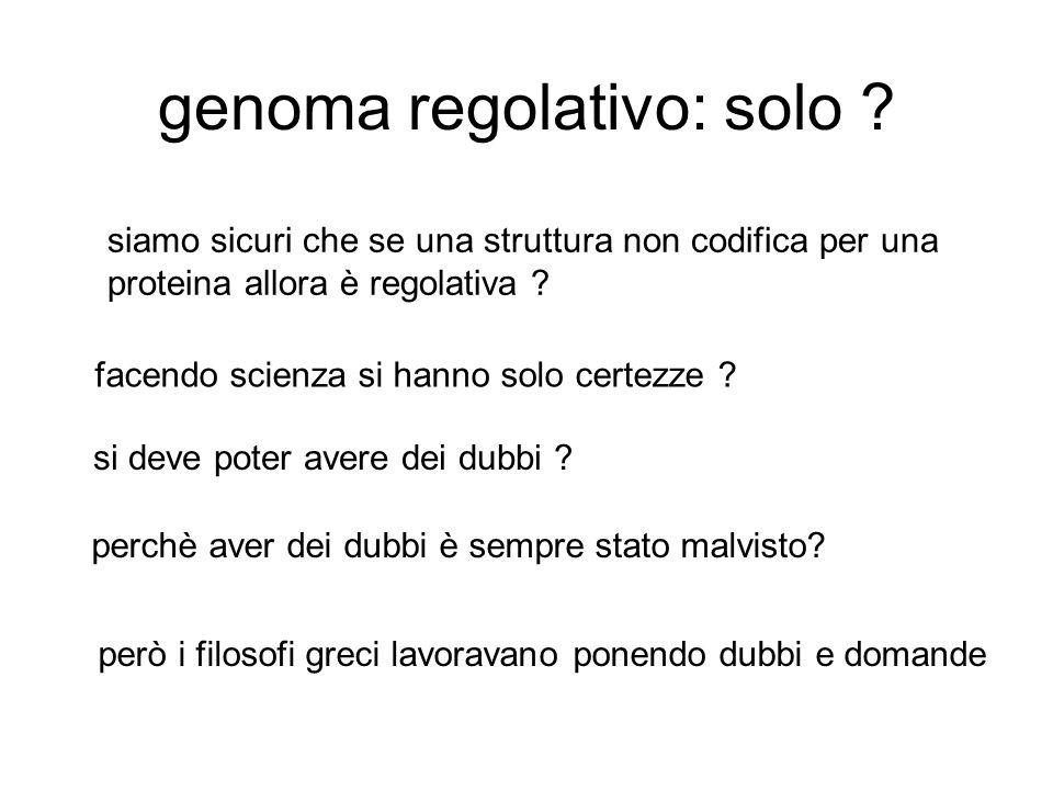 genoma regolativo: solo .